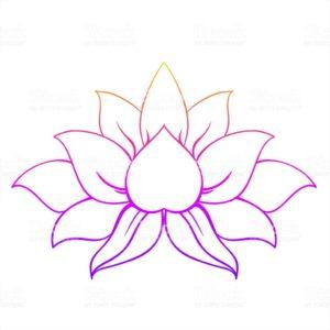 L'attribut alt de cette image est vide, son nom de fichier est lotus-300x300.jpg.